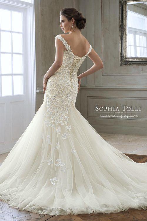 Y11884, Sophia Tolli