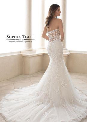 Y21825, Sophia Tolli