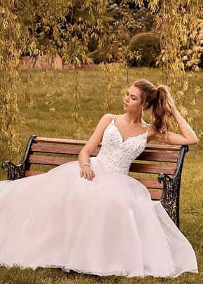 Y22054A Jasmine, Sophia Tolli