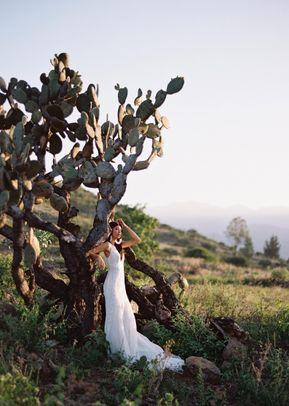 Jolene, Wilderly Bride