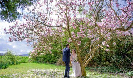 Alison Gaudion Wedding Photography