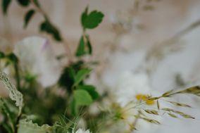The Freshford Florist