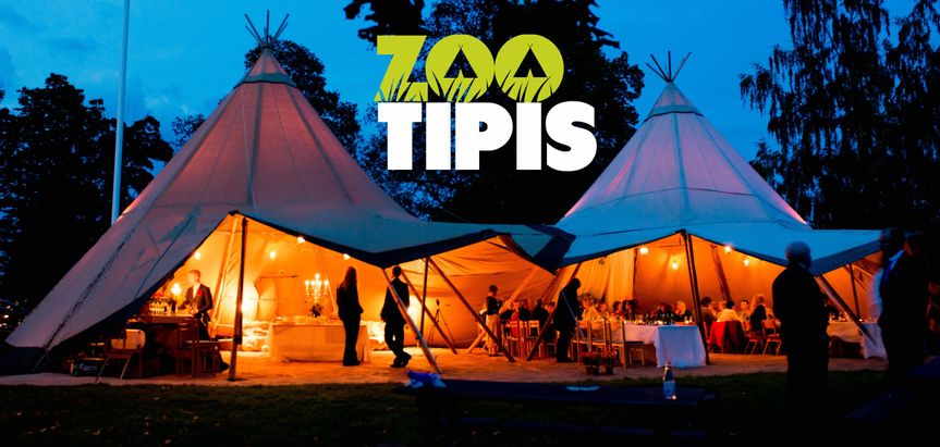 Marquee Hire ZooTipis 21
