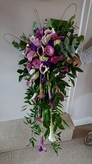 Wild Flowers of Harrogate