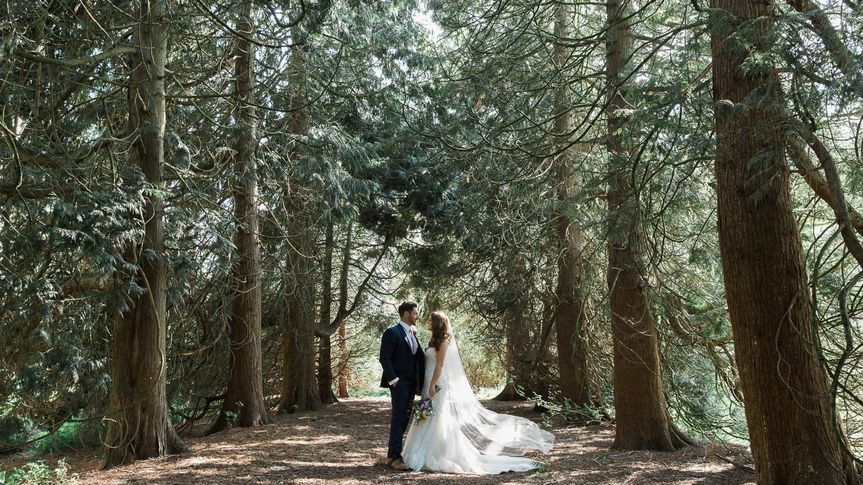 On a path through the woods - Danielle Smith Photography