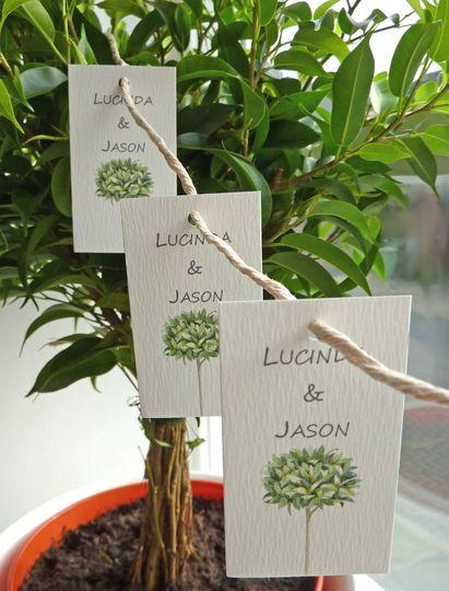 Bay tree tiny tags