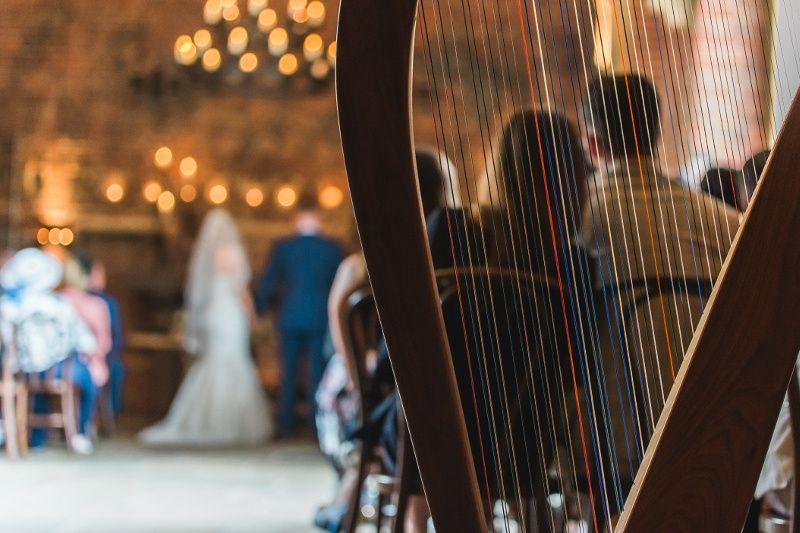 Music and DJs Christine Palethorpe (Nottingham Harpist) 10