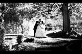 Paweddings