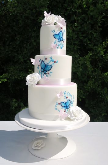 painted butterfly cake 4 111091