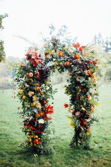 Autumn dahlia archway