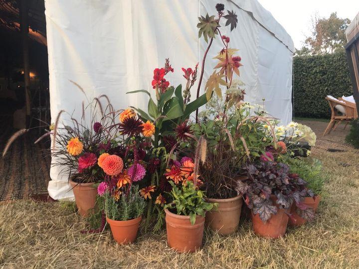 Florist Flower & Farmer 2