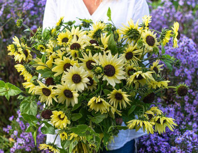 florist flower far 20200128111244801
