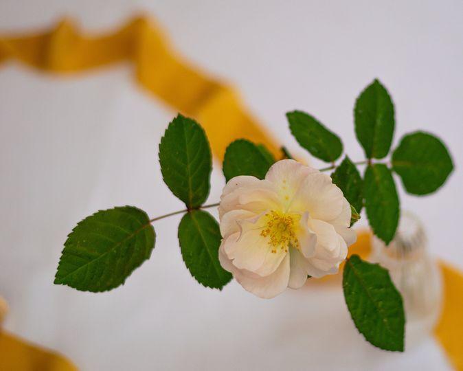 Florist Flower & Farmer 17