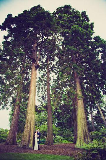 Royal Botanic Garden Edinburgh 28
