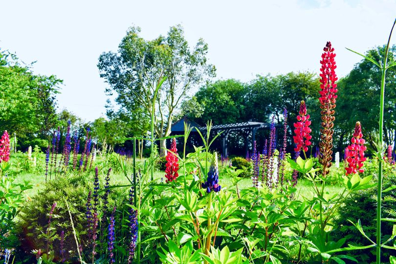 Beautiful garden location