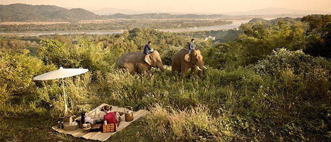 Chang Mai Elephant Rides