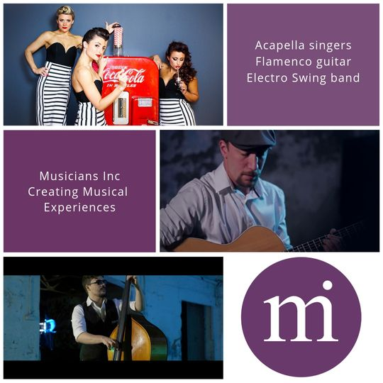 Entertainment Musicians Inc 3