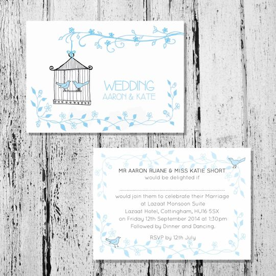 blue birdcage wedding 4 111641