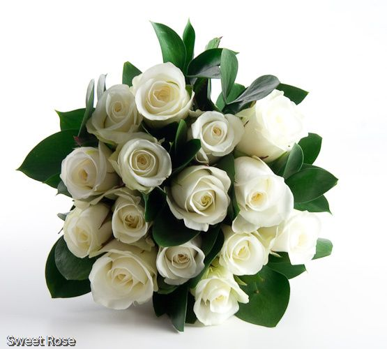 sweetrose 5 4 101670