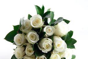 Sweet Rose Florists