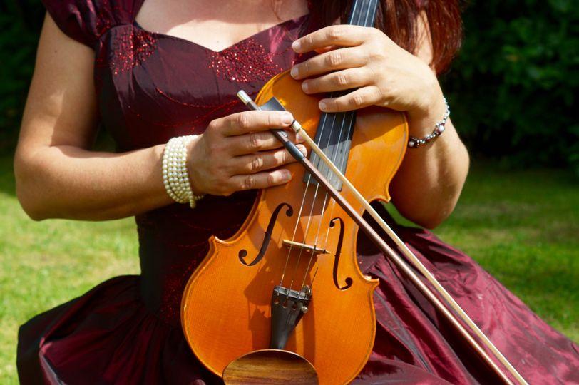 Solo wedding violin