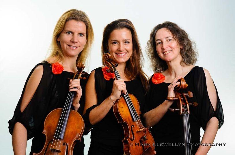 Saffron Strings trio
