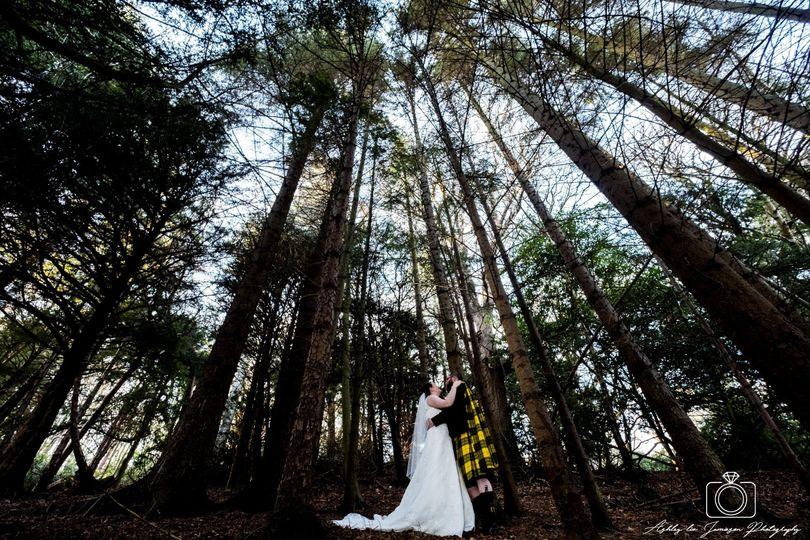 Melville Castle woodland