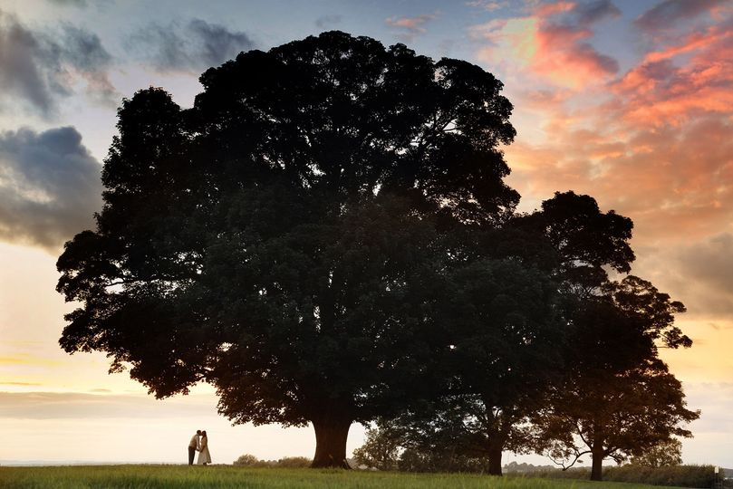 Kissing under a tree - Photography By Bill Haddon
