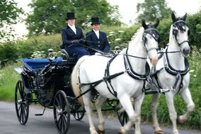 Lediard Carriage Services