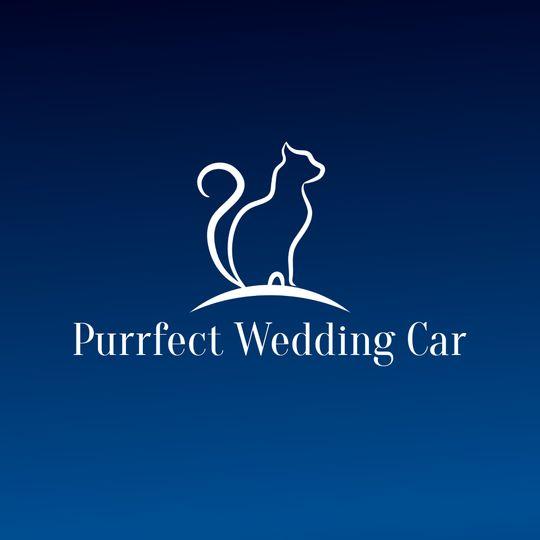 Purrfect Wedding Car