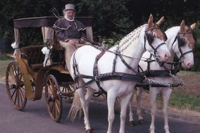 Cross Country Horse & Carriage