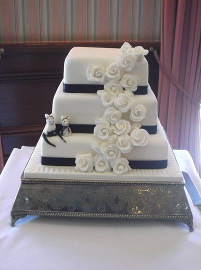 cat wedding 4 172259 1553202131