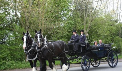 Warwick Shire Horse Carriages