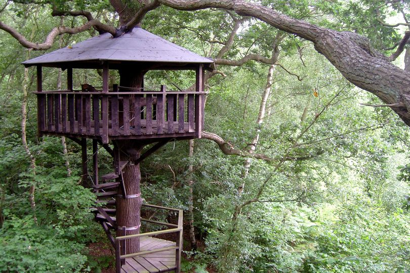 original treehouse
