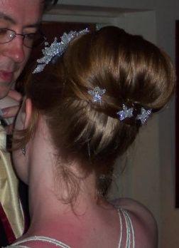 Crystal hair grips