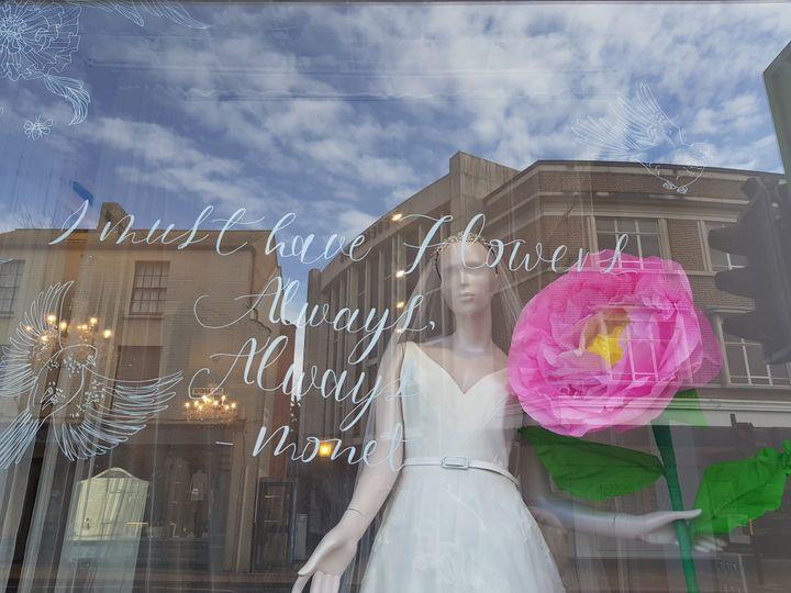 Taunton Window Display