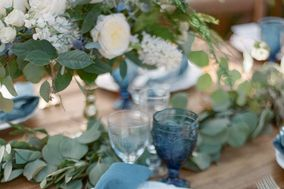 Lush Weddings & Events