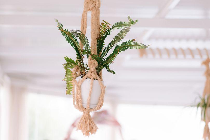 Potted Plant Decoration