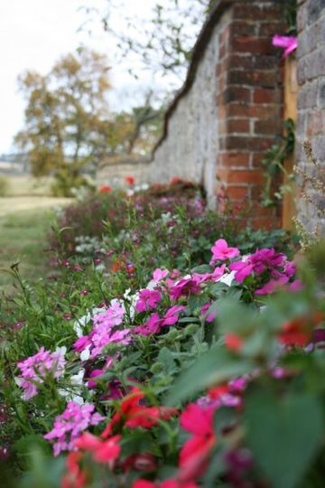 Flowers around the gardens at Creslow Manor
