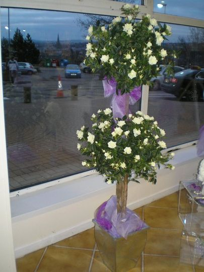 Topiary Rose Bud and Plainf Topiary Trees for Hire