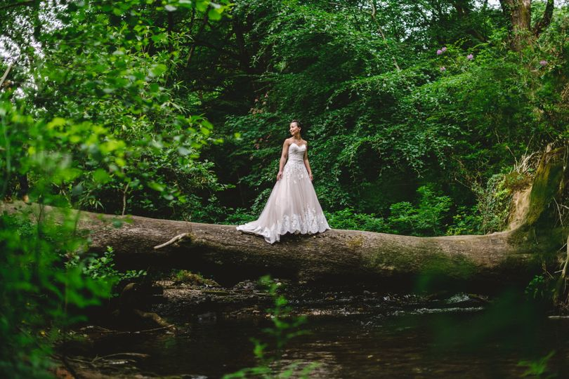 Bride standing on the trunk of a fallen tree