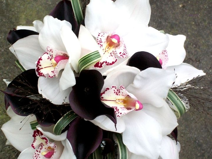 Orchids and Callas