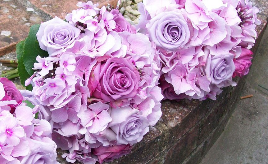 Purple wedding flowers - lilac Pacific Blue roses