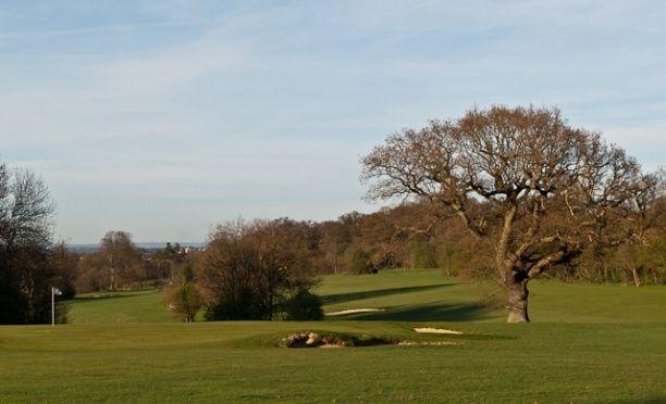 High Elms Golf Course 4