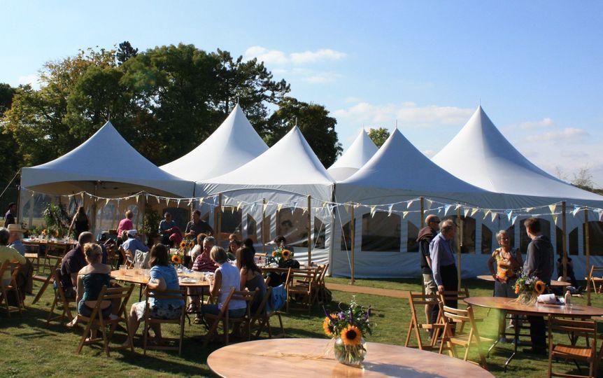 Festival canopies