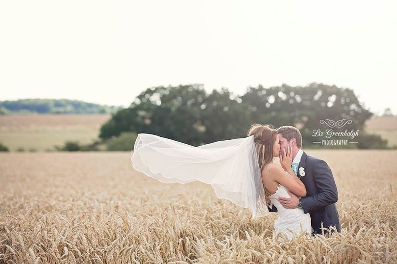 Crops of wheat fields for photos