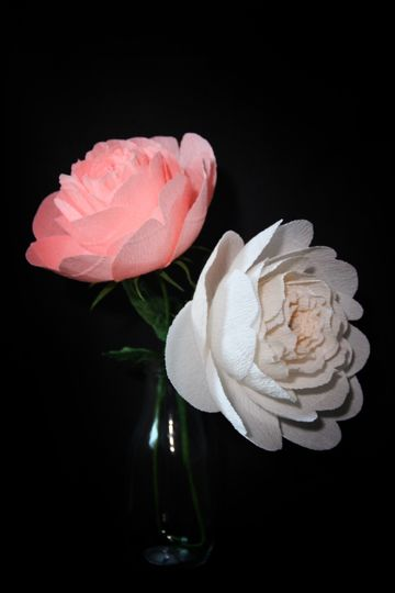 Pink and white paper peonies.