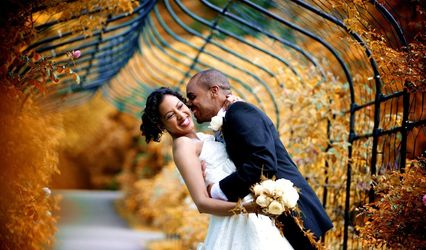 Your Wedding Filmed 1