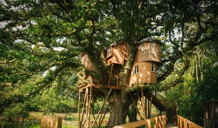 Fox & Hounds Country Hotel and Treetops Treehouse