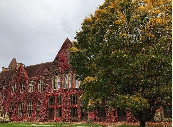 Cheltenham Ladies' College 49